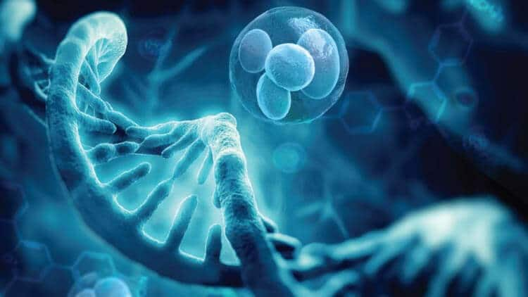 Stem Cell Treatment in Indianapolis